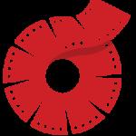 vidrise icon